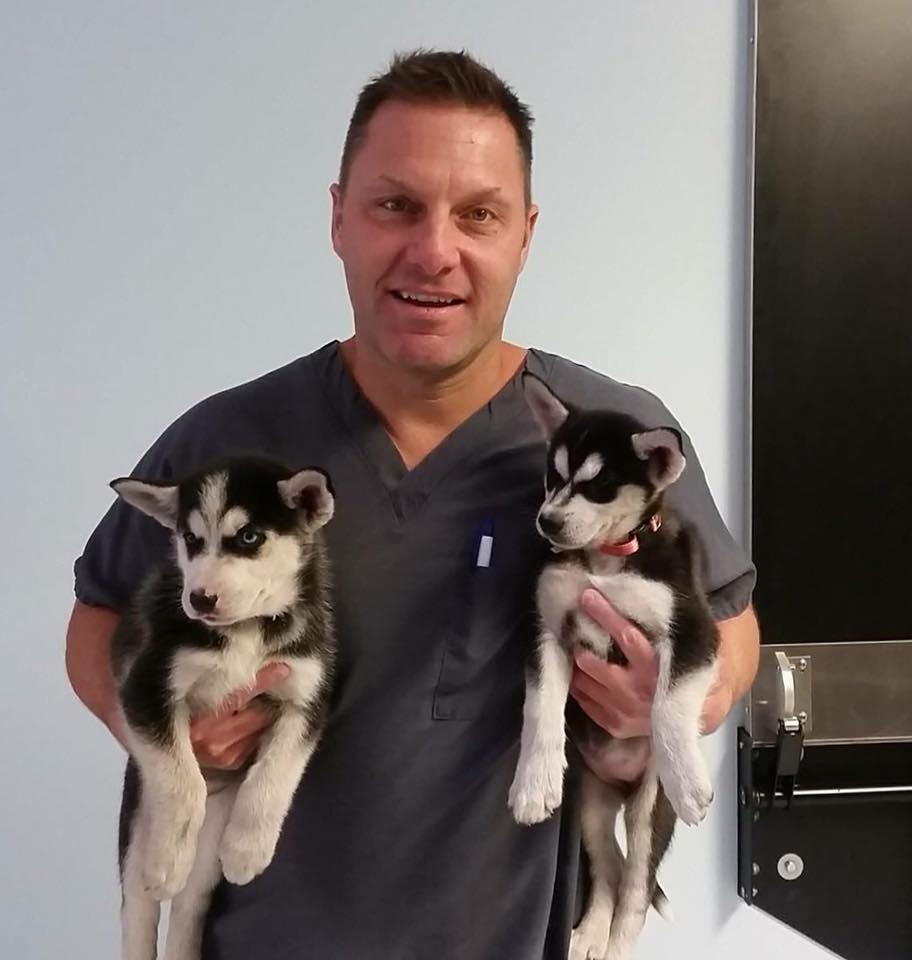 Dr. David R Fogelberg Grant Animal Clinic
